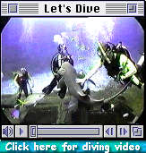 Click here for a diving movie clip